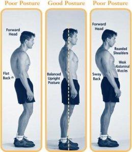 Hockey-Training-Posture[1]